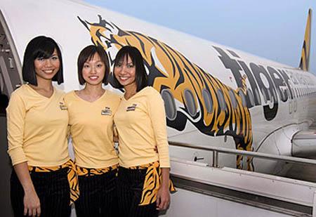 tiger_air
