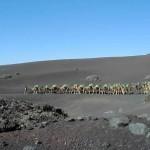 Viajes baratos a Canarias