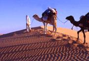 Viajes baratos a Tunez